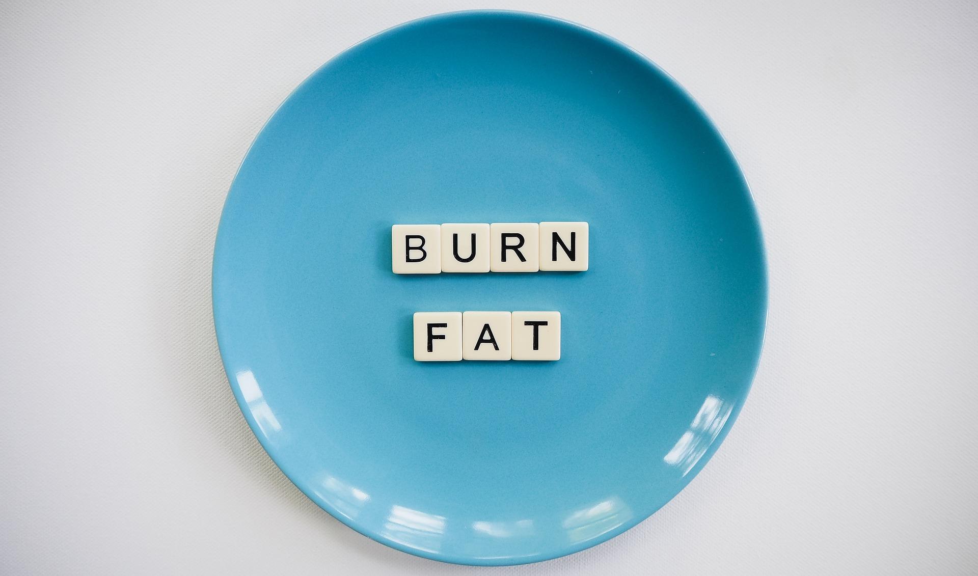 body burns fat